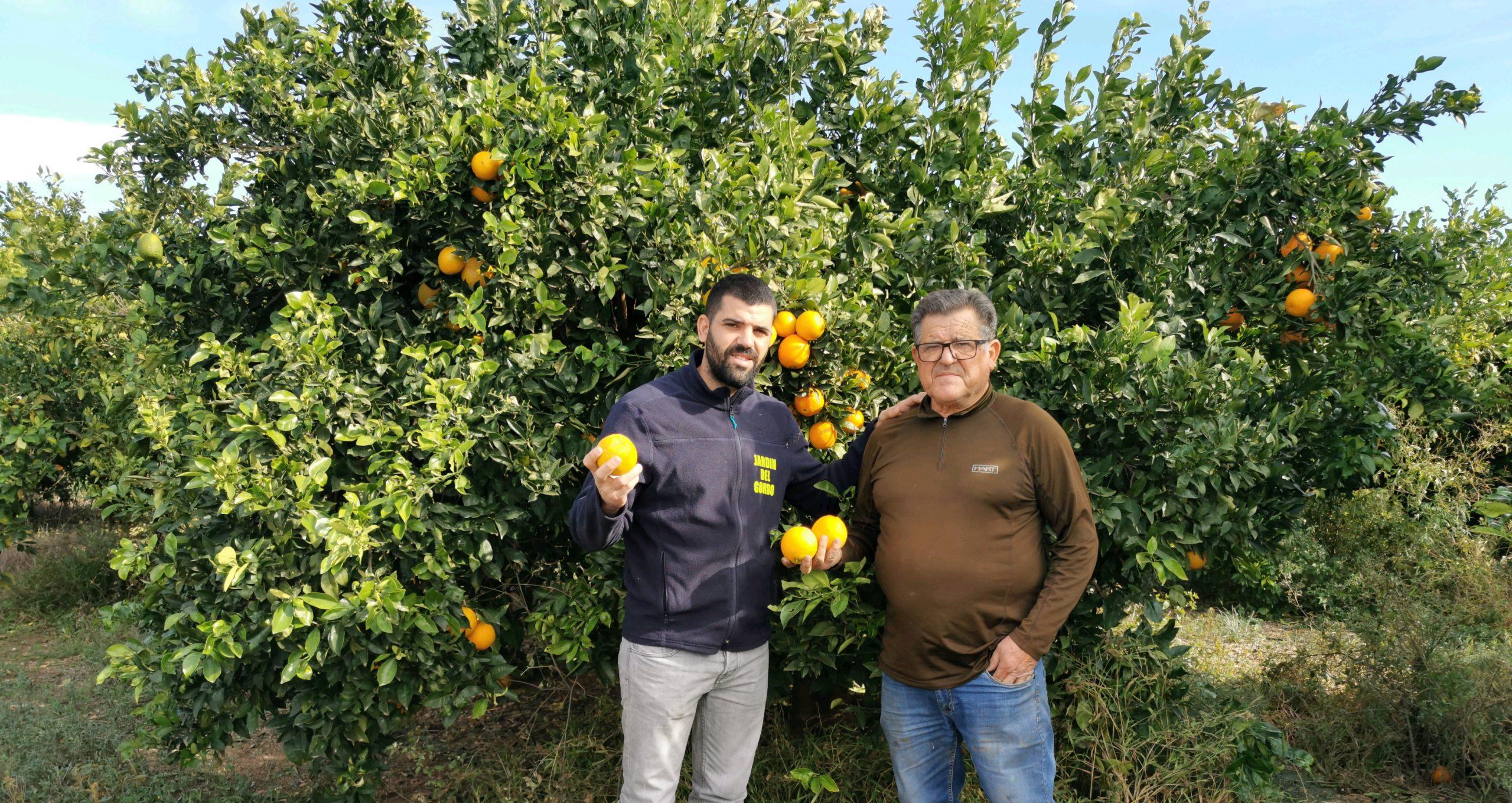 Farmer Sergio Muñoz and his father posing in front of his orange farm