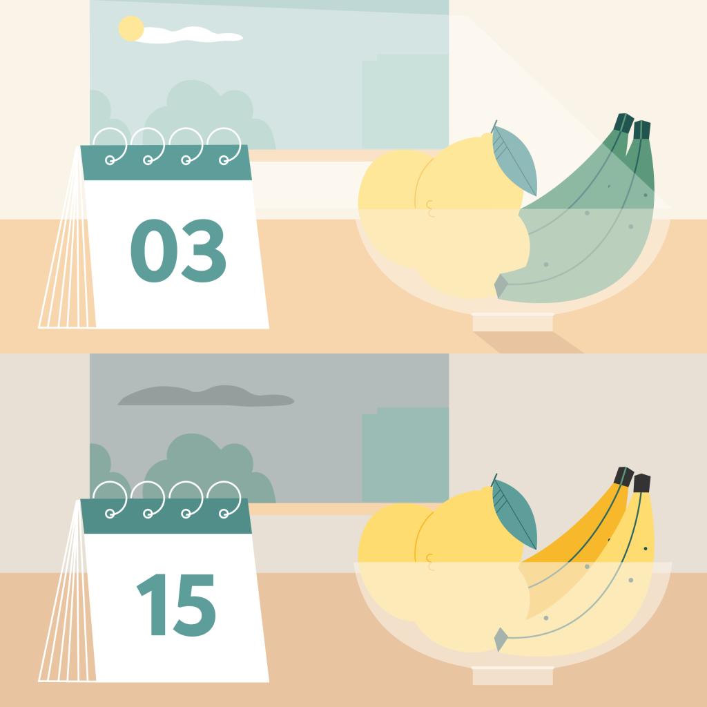 Grafik eines Glasgefäßes mit Zitronen, Bananen und einem Kalender